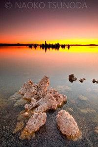 Mono Lake 11