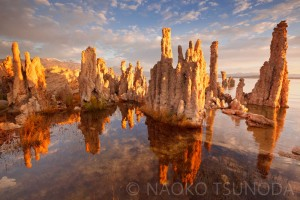 Mono Lake 5
